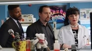 NCIS saison 15 episode 14