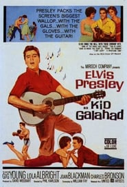 Kid Galahad Film Plakat