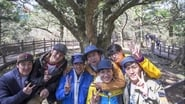 Jeju Island (2)