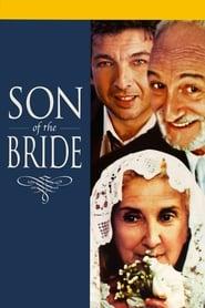 Son of the Bride 2001