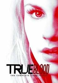 True Blood Saison 5 en streaming