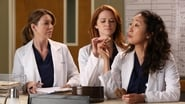 Grey's Anatomy Season 9 Episode 11 : The End is the Beginning is the End