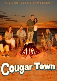 Cougar Town streaming vf poster