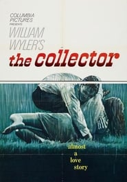 voir The Collector en entair streaming