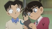 Conan and Heiji, Code of Love (1)