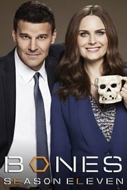 Bones - Season 9 Episode 21 : The Cold in the Case Season 11