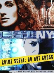 CSI: NY saison 3 streaming vf