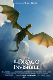 Il drago invisibile (2016)