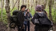 Blair Witch image, picture