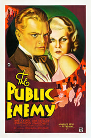 Plakat The Public Enemy