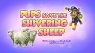 Pups Save the Shivering Sheep