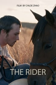 The Rider (2018), Online Subtitrat