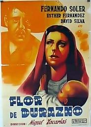 poster do Flor de durazno