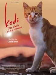 Kedi – Des chats et des hommes (2017) Netflix HD 1080p