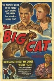 The Big Cat film streaming
