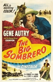 Plakat The Big Sombrero