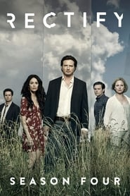 Streaming Rectify poster
