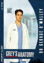 Grey's Anatomy Season