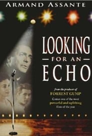 Looking for an Echo Film Plakat
