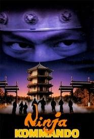 龍之忍者 Netflix HD 1080p