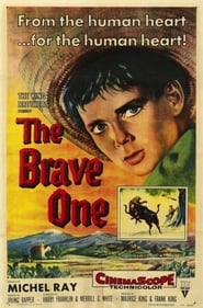The Brave One Netflix HD 1080p