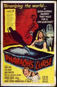 Foto di Pharaoh's Curse