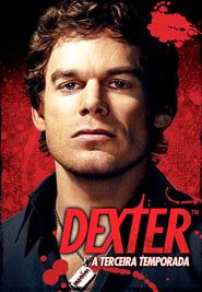 Dexter 3ª Temporada (2008) BDRip Bluray 720p Download Torrent Dublado