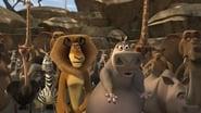 Captura de Madagascar: La pocima del amor