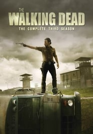 The Walking Dead 3ª Temporada (2012) 720p Download Torrent Dublado