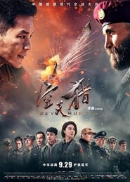 Sky Hunter (2017) Watch Online Free