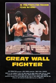 Fire on the Great Wall (1981)