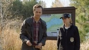 NCIS saison 15 episode 20
