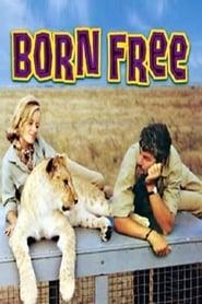 Born Free Poster