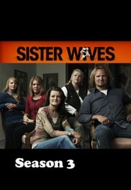 Sister Wives Season 3