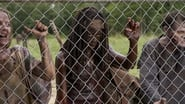 Image The Walking Dead 3x7
