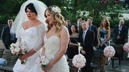 Grey's Anatomy Season 7 Episode 20 : White Wedding