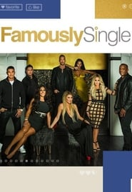 Streaming Famously Single poster