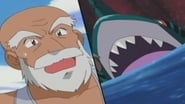 Pokémon Season 6 Episode 19 : Sharpedo Attack!
