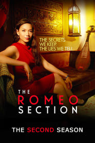 Streaming The Romeo Section poster