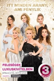 The Real Housewives of Hungary Season
