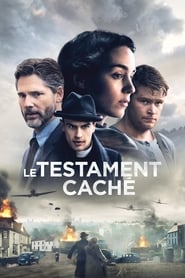 Film Le Testament caché 2016 en Streaming VF