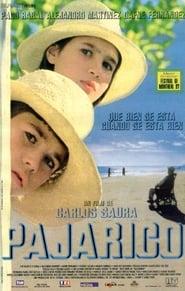 Affiche de Film Little Bird