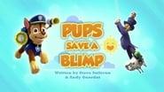 Pups Save a Blimp