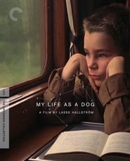 Affiche de Film My Life as a Dog