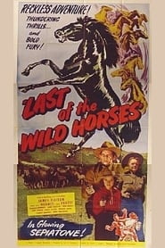 Affiche de Film Last of the Wild Horses
