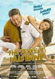 The Perfect Husband (2018) 720p WEB-DL 900MB Ganool
