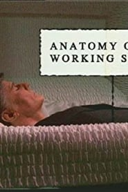 Anatomy of a Working Stiff