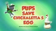 Pups Save Chickaletta's Egg