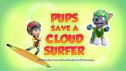 Pups Save a Cloud Surfer