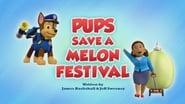 Pups Save a Melon Festival